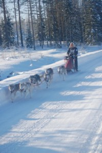 Kasarin Salpasäpinät 2010 kilpailukoe