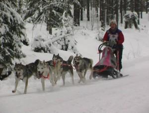 Kasarin Salpasäpinät 2007